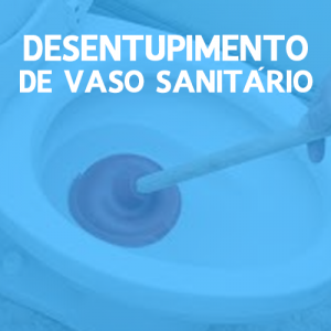 Desentupimento de vaso sanitário Curitiba